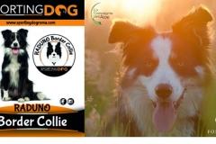 sporting_dog_giugno_19_101